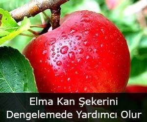 Elma Kan Şekerini Dengelemede Yardımcı Olur