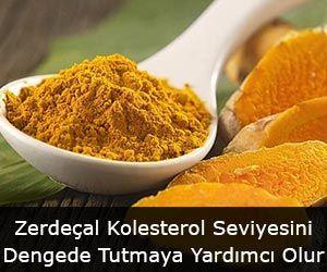 Zerdeçal Kolesterol Seviyesini Dengede Tutmaya Yardımcı Olur
