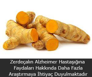 Zerdeçalın Alzheimer Hastaşığına Faydaları Hakkında Daha Fazla Araştırmaya İhtiyaç Duyulmaktadır