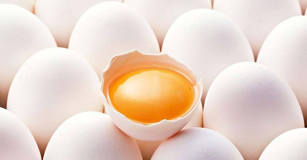 Beyaz Yumurtanın Faydaları