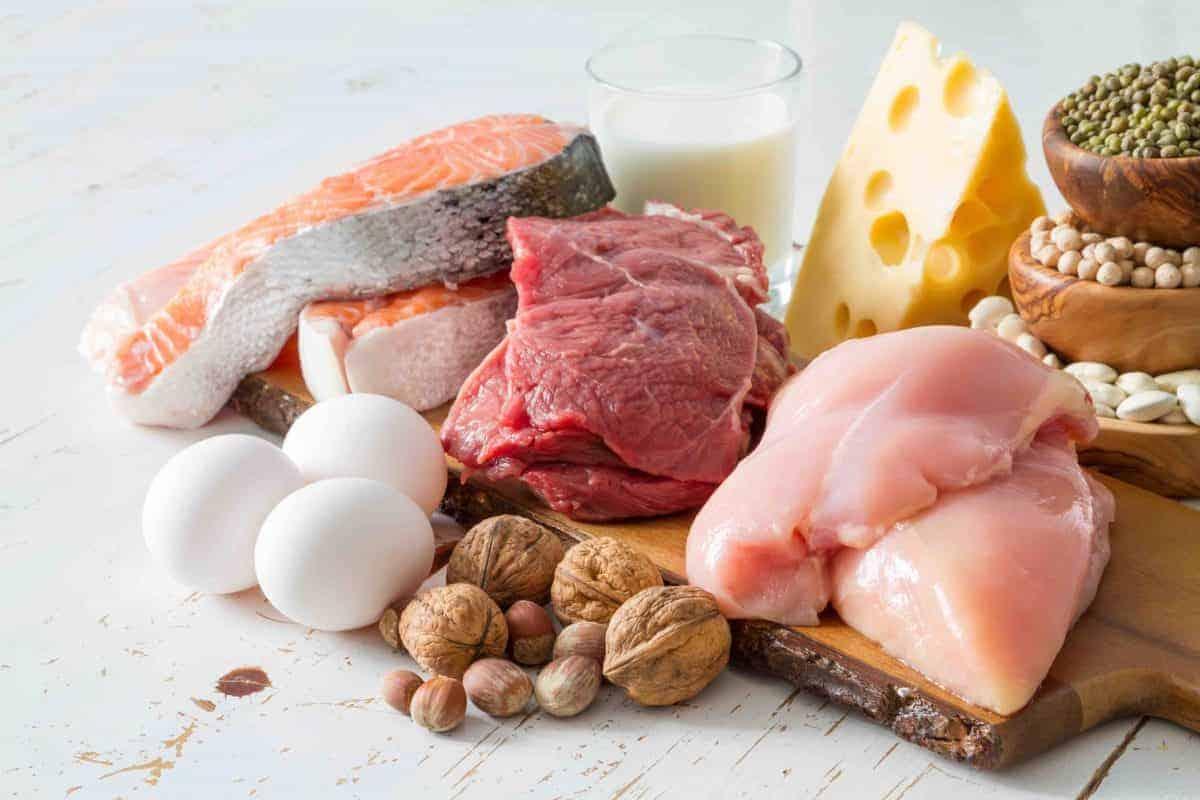Protein Nedir? Nelerde Bulunur? + 32 Besin, Yiyecek