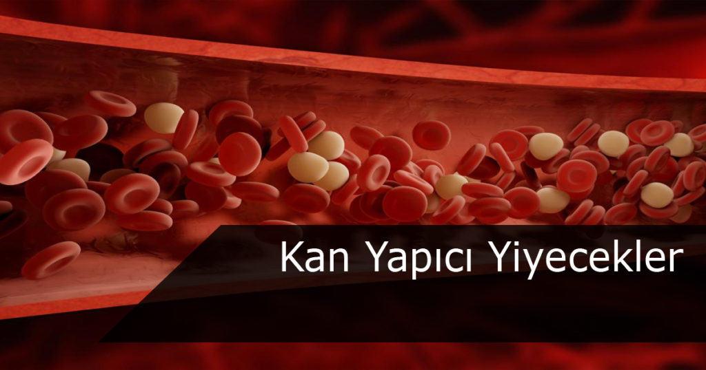 Kan yapıcı yiyecekler
