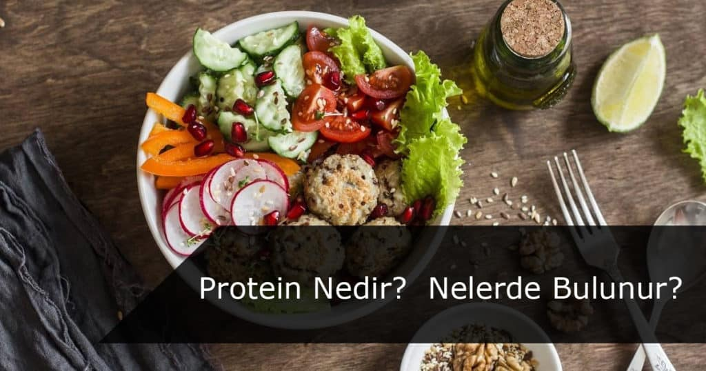 Protein Nelerde Bulunur