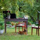 outdoor office space in the garden