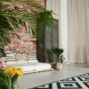 Modern decor of spacious lounge with small orangery